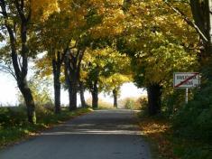 Podzimní cesta