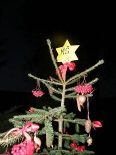 Rozsvěcení vánočního stromku